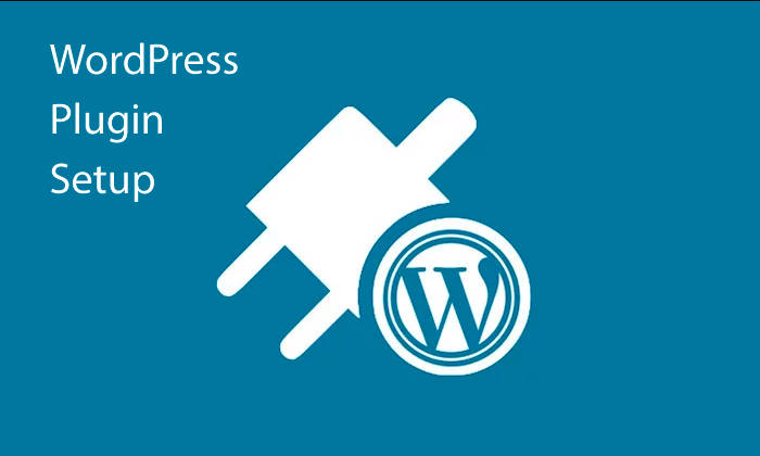 WordPress Plugin Setup - Adaptability is one of the reasons why WordPress is such a good choice for small business websites.