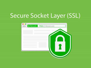 SSL Certificate - is the most important thing you can do for your website to increase security and establish trust with your visitors and customers.